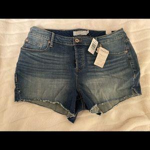 Torrid Shorts! Size 16!